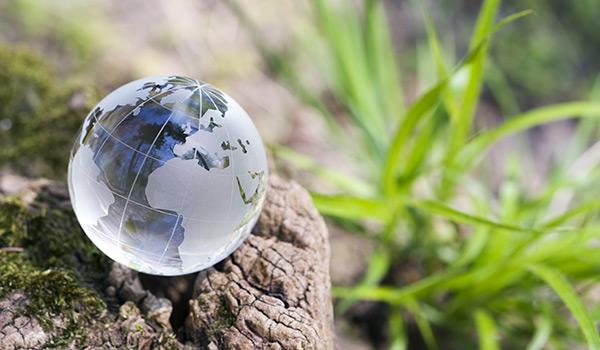 Revaloriser votre informatique ou recycler est une option verte qui vaut la peine pour l'environnement.